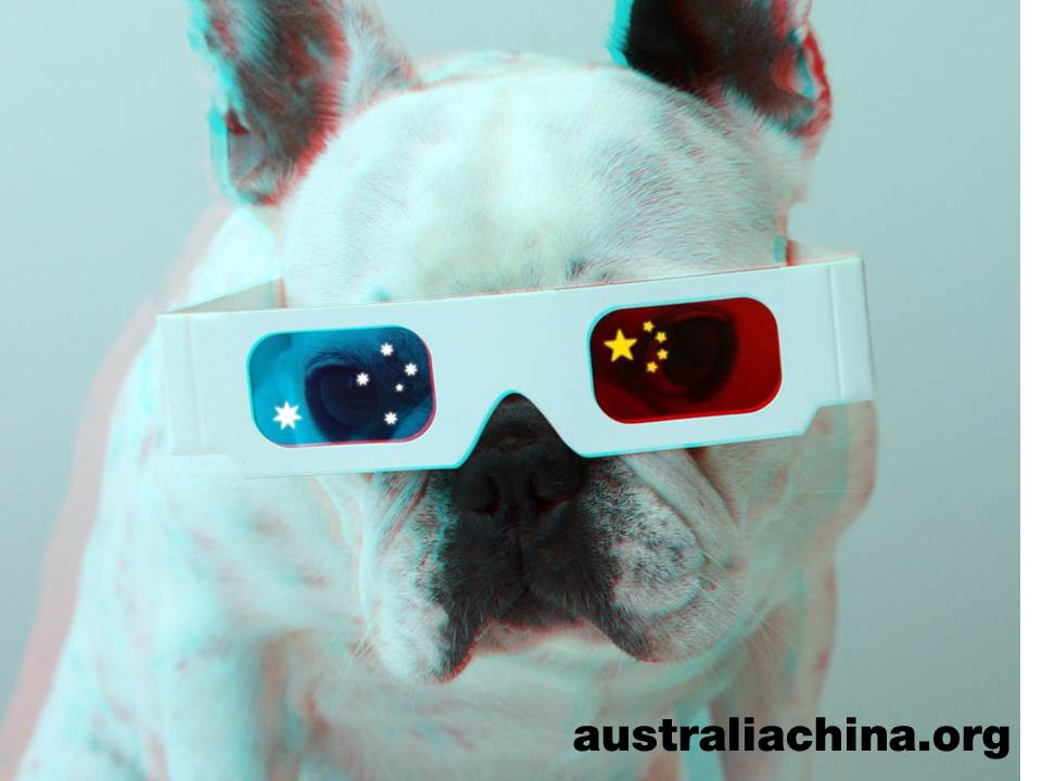 China Australia Millennial Project